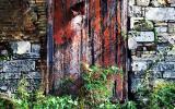 doors-Puerto-Rico42.jpg