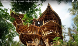 Bamboo-house-in Thailand