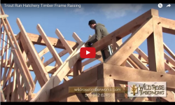 timber framing a roof image