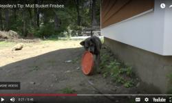 mud-bucket-frisbee-tip.png